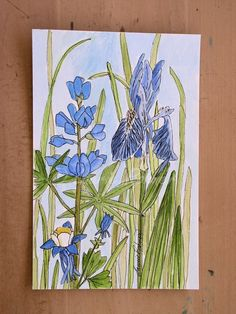 A botanical landscape nature art watercolor illustration of blue and green flowers by Laurie Rohner. Iris larkspur and columbine are their names.