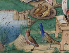 Chants royaux en l'honneur de la Vierge au Puy d'Amiens Date d'édition : 1501-1600 Type : manuscrit Langue :Français Format : Vélin, miniatures, lettres ornées Droits : domaine public Identifiant : ark:/12148/btv1b8426257z