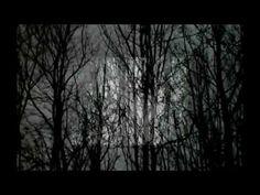 john cage - experiences no.2 (lyrics by e.e. cummings, vocals by robert ...
