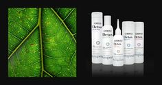 Hair DETOX home treatment to deeply detoxify and stimulate hair growth. Use every 10 days.