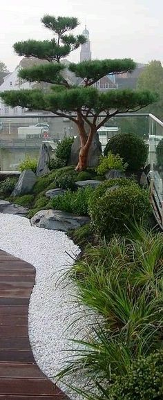 Latest Totally Free japanese garden house Concepts Japoneses gardens are general. Latest Totally Free japanese garden house Concepts Japoneses gardens are generally conventional gardens that produce mini idealized landscapes, normally inside a. Japanese Water Gardens, Japanese Garden Landscape, Small Japanese Garden, Japanese Garden Design, Japanese Plants, Japanese Style, Japanese Fence, Japanese Modern, Back Gardens