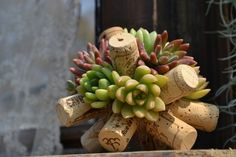Japanese ideas for small succulents