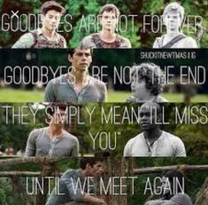 I just reread the Death Cure. This pulls at the heart strings. Chuck, Newt, and Teresa were my favorite characters. And it's just so horrible and when they died it's just ugh my heart Maze Runner Quotes, Maze Runner Funny, Maze Runner Trilogy, Maze Runner Thomas, Maze Runner The Scorch, Maze Runner Cast, Maze Runner Movie, Maze Runner Series, Thomas Brodie Sangster