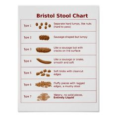 @@@Karri Best price          	Bristol Stool Chart Poster           	Bristol Stool Chart Poster today price drop and special promotion. Get The best buyDiscount Deals          	Bristol Stool Chart Poster lowest price Fast Shipping and save your money Now!!...Cleck Hot Deals >>> http://www.zazzle.com/bristol_stool_chart_poster-228741350074416217?rf=238627982471231924&zbar=1&tc=terrest