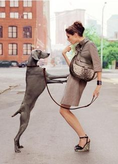 Coco Rocha with a beautiful Weimaraner for Longchamp S/S 12 by Dane Shitagi Paris 3, Spring Hairstyles, Dog Walking, Kate Moss, Mans Best Friend, Belle Photo, Editorial Fashion, Puppy Love, Fashion Photography