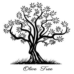Find Olive Tree silhouette, vector Stock Images in HD and millions of other royalty-free stock photos, illustrations, and vectors in the Shutterstock collection. Silhouette Frames, Silhouette Clip Art, Tree Silhouette, Tree Design On Wall, Tree Stencil, Stencils, Frida Art, Wild Tattoo, Vector Trees