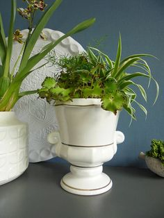 West German pottery planter ceramic planter pot orchid planter urns ceramic pot vintage planter mid century modern planter white planter urn