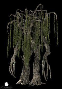 Ent Willow from The Lord of the Rings trilogy