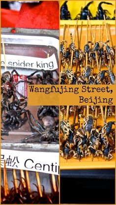 Wangfujing Street in Beijing, China, is full of exotic and strange food. Would you eat any of it? For more information visit the blog