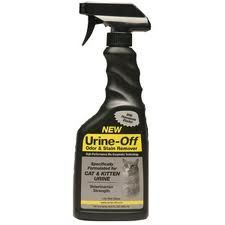 How To Clean Cat Urine - Step By Step Instructions | Toileting Problem #CatSprayingOdorRemoval