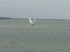 Watching regatta from our balcony-what a view! Best coastal view