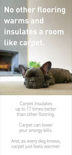 Shaw Carpet: Save Energy By Installing Carpet -ShawFloors.com