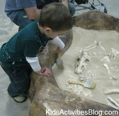 Beach in a Box: Digging for Shells and Dinosaurs - Kids Activities Blog