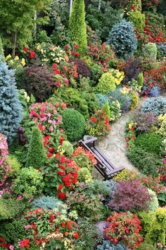 """The border is in terraces supported by large rocks. The colourful flowers are begonias and they are in containers of one, two or three tiers. We can quickly remove them in the autumn and store the corms for the winter. Without the containers of flowers we can then appreciate the changing leaf colours of the acers and azaleas.""- By Four Seasons Garden"