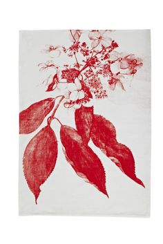 bonnie and neil tea towel Botanical Flowers, Botanical Art, Bonnie And Neil, Diy House Projects, Pattern Illustration, Tea Towels, Flower Art, Printmaking, Amazing Art