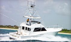 60% Off Deep-Sea-Fishing Trip - Corsair Sport Fishing | Groupon