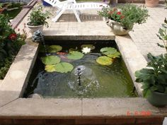 1000 images about un bassin dans mon jardin on pinterest small garden ponds ponds and google - Petit bassin poisson tourcoing ...