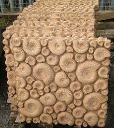 "Large ""Ammonite""slabs-enlargement"