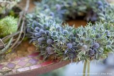 Wreaths feature all year round in the shop, from spring flowers through wedding season into summer parties, autumn berries and the grand winter finale, Christmas and New Year. Zita Elze's wre… Dried Flower Wreaths, Fall Wreaths, Dried Flowers, Christmas Wreaths, Christmas Crafts, Christmas Decorations, Blue Harvest, Christmas Interiors, Christmas Flowers
