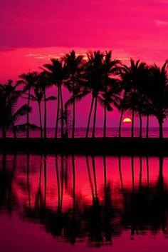 Simpsons Tea — Beach Sunset.