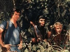 planet of the apes tv show 1974 - Google Search
