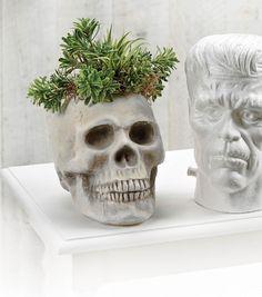 Skull Head Planter
