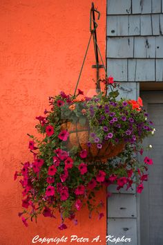 """The Next Step - Picture of the Day: 9/12/13 - """"Basket of Blossoms"""" On Jordan Street, outside Johnny Angel's Heavenly Burgers, in Skaneateles, NY."""