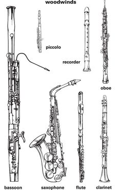 Clear scaled image for handout or poster of woodwind instruments. Woodwind Instrument, Instruments Of The Orchestra, Basson, Music Worksheets, Music Activities, Elementary Music, Music For Kids, Music Classroom, Orchestra