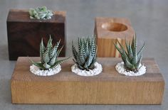 Cute planters made from leftover woods by Lila B Designs Wood Planters, Gardenista Contemporary Planters, Modern Planters, Wood Planters, Indoor Planters, Planter Boxes, Succulent Planter Diy, Faux Succulents, Commercial Planters, Wooden Vase