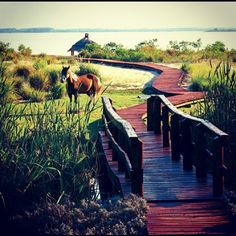 Four Seasons Fotog — Retreat to Carmelo, Uruguay, and relax near the...