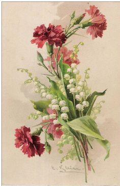 Gallery.ru / Фото #27 - цветы - ladushka333