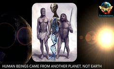 UFOLOGIA - OVNIS ONTEM: Os seres humanos vieram de outro planeta e não da ...