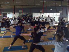 Yoga y Taichi