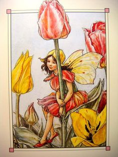 The Tulip Fairy ~ Cicely Mary Barker