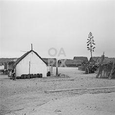 """traditional constructions in wood near the beach Casas em """"bracejo"""" e """"camarinha"""""""