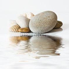 Fototapete Bachlandschaft - galets et coquillages sur l'eau