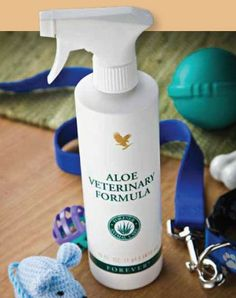 When a family member suffers minor skin irritations, we reach for Aloe First. Since we also treat our pets as part of the family, they too should experience the power of the 'Miriacle Plant' that is Aloe Vera! Forever Living Products has created Aloe Veterinary Formula – Mother Nature's soothing Aloe spray for animals. Protect your pets & purchase your bottle today,
