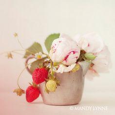 strawberries & peonies