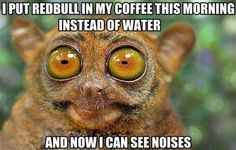 I Put Redbul In My Coffee Instead Water,  Click the link to view today's funniest pictures!