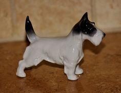 """Vintage   METZLER & ORTLOFF   Porcelain TERRIER Dog   Cute Black & White Terrier  4""""x 3 1/4"""" http://r.ebay.com/K9G2WH"""