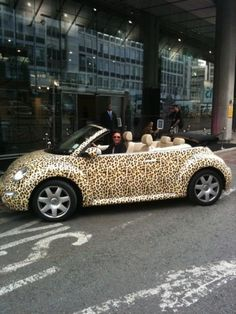 cheetah bug-----Lu Lu - this one is soooo you! Imagine driving around campus in this thing! AWESOME!