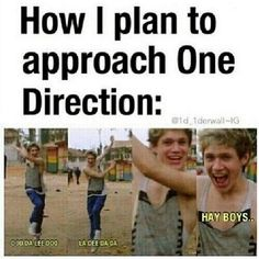 18 one direction memes only a true fan will understand One Direction Humor, One Direction Pictures, I Love One Direction, Niall Horan, Zayn Malik, Liam Payne, Louis Tomlinson, Love Of My Life, I Laughed