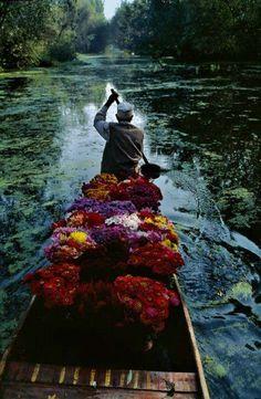 Photo : Steve Mc Curry #powerflower <3