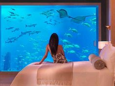 My husband would kill for this in our bedroom. #fishtank