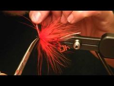 Tying a Hoh bo Spey (weighted) Fly Paper, Steelhead Flies, Salmon Flies, Fly Rods, Fly Tying, Fly Fishing, Tie, Trout, Hooks
