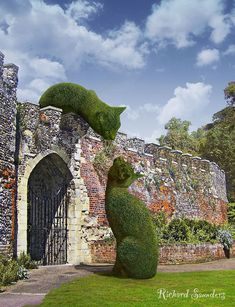 Topiary in Hertfordshire, UK; photo by Richard Saunders Richard Saunders, Topiary Garden, Garden Art, Topiaries, Cat Garden, Topiary Plants, Garden Types, Parks, Dream Garden