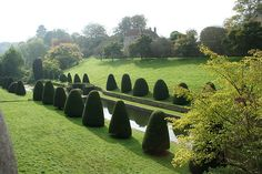 Topiary at Mapperton