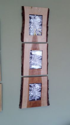 wood slice picture frames