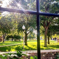 Campus greenery as seen from the Edith Mortenson Center at Augustana University