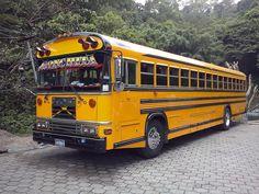 CAM01253[1] School Bus Camper, Old School Bus, School Buses, Malta Bus, Bluebird Buses, Nice Bus, Converted School Bus, Classic Motors, Top Cars